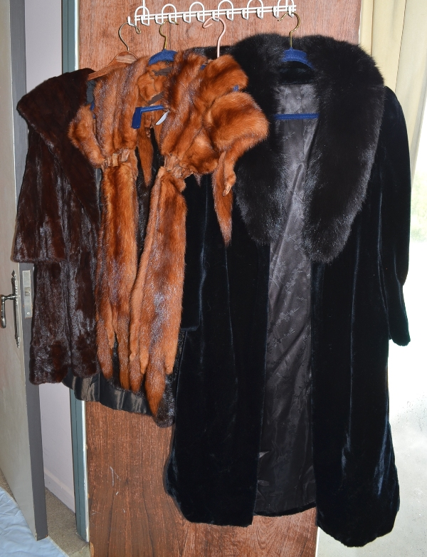 Furs Mink, Cherry Fox and more